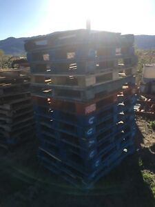 Pallets Skids for sale