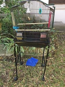 Bird cage with stand and accessories Lilyfield Leichhardt Area Preview