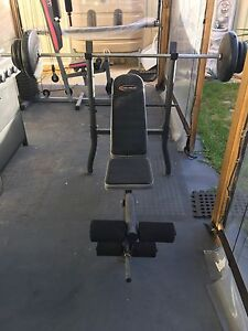 Celsius weights bench with Bench press Parafield Gardens Salisbury Area Preview