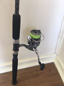 Fibre glass fishing rod and reel Tenambit Maitland Area Preview
