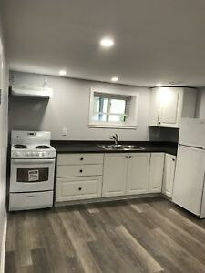 Just Renovated, stunning downtown, one bedroom basement