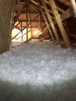 Attic insulation top up- best quality-best price-call 6478028841