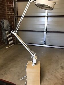 Beauty Lamp Newport Hobsons Bay Area Preview