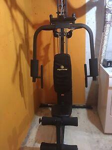 !!! REDUCED !!!!  Apex home gym