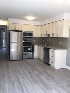Brand new 1 bedroom unit in downtown Kitchener for rent