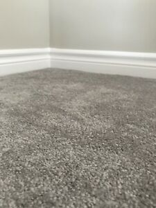 Brand new carpet w/ underpad and tack strips!
