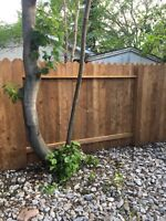 Affordable tax and fencing
