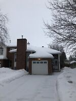 Roof snow removal and walkways driveways