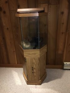 Hexagon 20 gallon tank plus stand and accessories