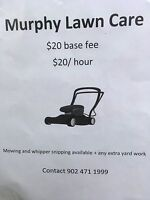 Lawn care and mowing service