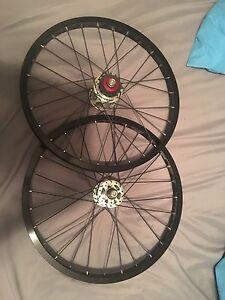 NEW Alienation BMX race wheels!
