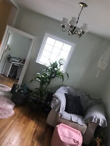 One bedroom sublet in shared south end apartment