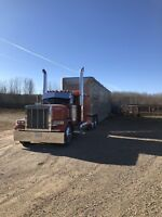 Custom Cattle and Grain hauling
