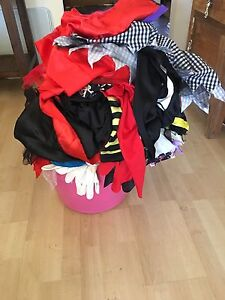 Girls dress up box of clothes for children Murray Bridge East Murray Bridge Area Preview