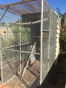 Bird Cages Cabarita Mildura City Preview