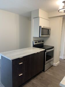 New & Affordable 2 Bedroom—Power Included, New Appliances