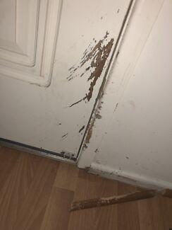 Wanted: WANTED: Handyman to fix my door