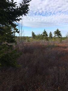 10 Acres of land perfect for hunting camp.