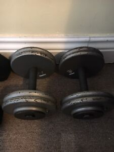 50 pound steel dumbbells and 35 pound coated dumbbells for sale