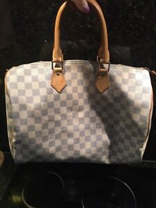 lv Louis Vuitton speedy purse
