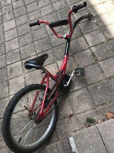 Tandem bike schwinn