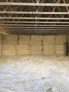 Large Straw Bales for Sale