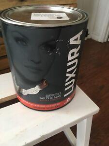 Gallon de peinture gris foncé neuf