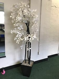 Faux white flower plant - 6 feet - perfect shape