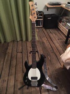 Bass Slammer Hamer ** Gauchère **