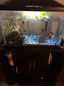 20 gallon Fish tank & stand 200$ for both