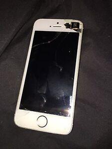 iphone 5s 100$