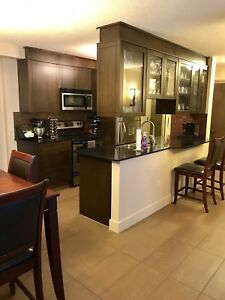 Fully furnished 2 Bedroom Condo Downtown