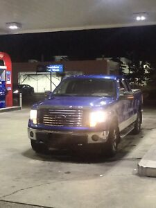 F-150 -- CUSTOM ORDERD BLUE FULLY LOADED - IMMACULATE