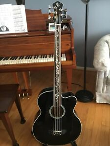 Michael Kelly Acoustic/electric Bass 5 string fretless