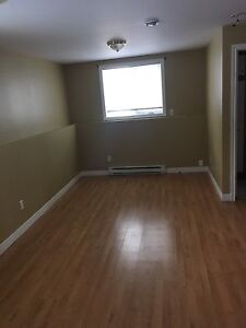 NEW PRICE!!! 1 Bedroom Basement Apartment For Rent