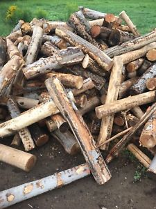 Firewood for outdoor boiler