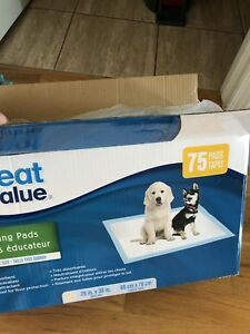 Dog training plastic peepee pad