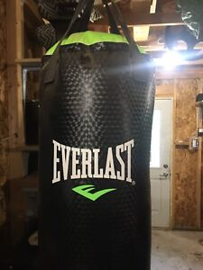 Everlast 70lb heavy bag with spring and rafter mount