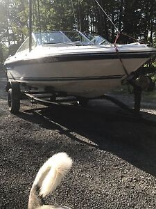 Sea Ray Bowrider 130hp outboard low hrs