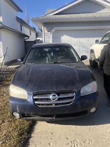 2003 Nissan Maxima for Sale