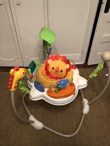 Fisher Price Jumperoo, Rainforest Friends $75