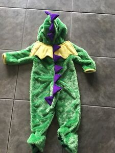 3T and 18 months Dragon Costumes