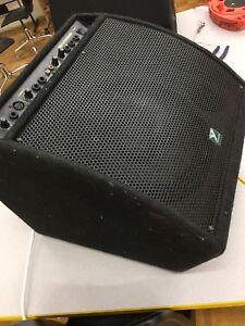 Yorkville Kw100 amp