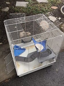 Cage pour furets et rongeurs/ cage for ferrets and guinea -pigs