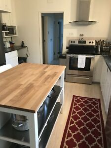 Family Home for Rent - Southend Halifax