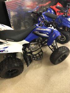ATV QUADS DIRTBIKES FROM 50cc to 1000cc