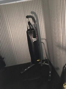 Everlast punching bag and century stand