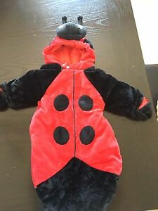Ladybug costume ~ 3m
