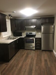 BRAND NEW - 2 bedroom apartment (46A Moffatt Road, Mount Pearl)