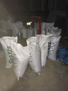Oats for sale